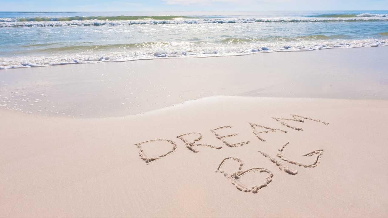 Dream Big, OPhiA!